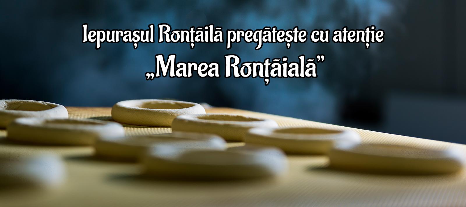 Covrigei sarati Rontaila - banner 4