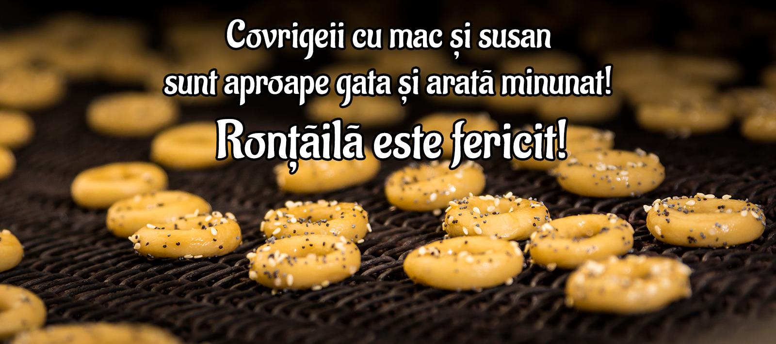 Covrigei sarati Rontaila - banner 1